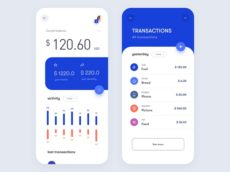 Wallet mobile app design