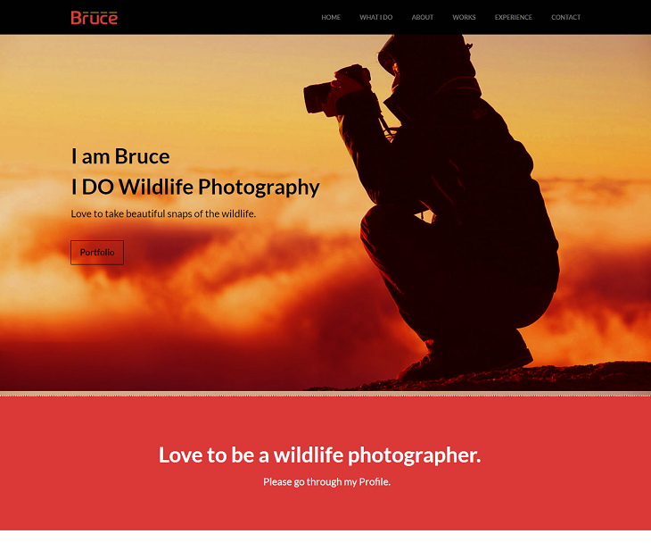Bruce Resume website template, resume website template free download