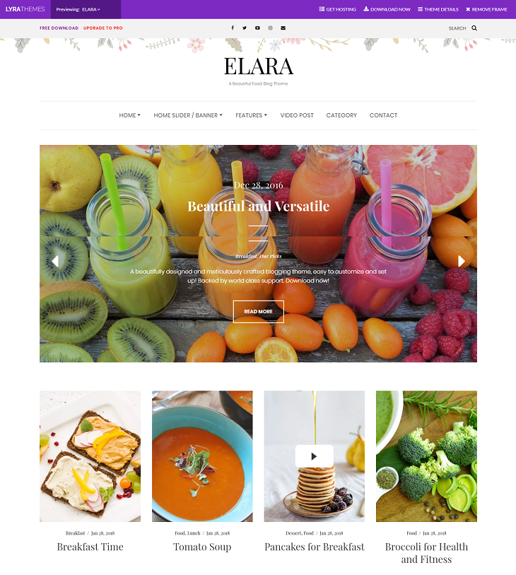 Elara WordPress Themes, best free wordpress themes for blogs