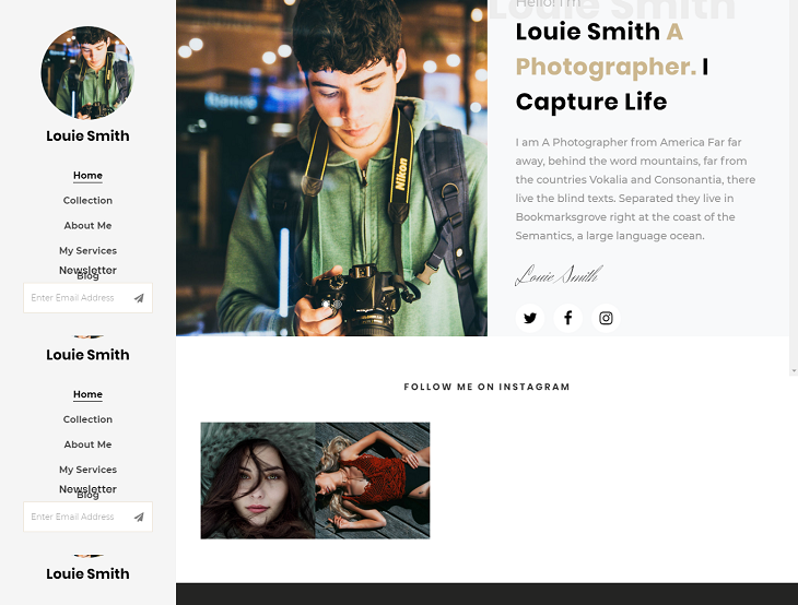 Louie Resume website template, resume website template free