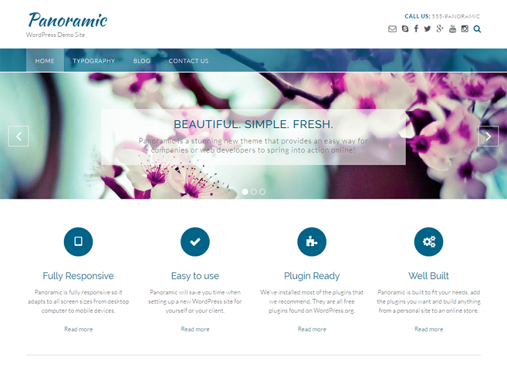 Panoramic WordPress Themes, most customizable free wordpress theme