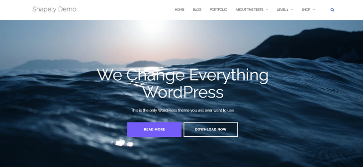 Shapely WordPress Themes, wordpress templates free