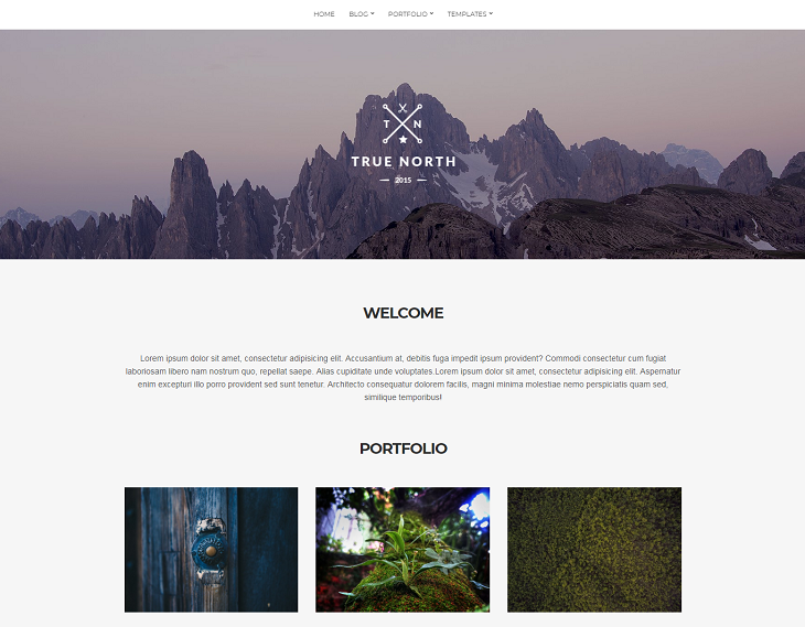 True North WordPress Themes, wordpress theme responsive free