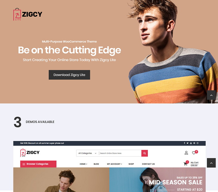 Zigcy Lite WordPress Themes, wordpress responsive themes free